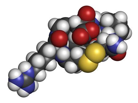 cíclico: Eptifibatida molécula de fármaco anticoagulante. representación 3D. Los átomos se representan como esferas con codificación de colores convencionales: hidrógeno (blanco), carbono (gris), nitrógeno (azul), oxígeno (rojo), azufre (amarillo).