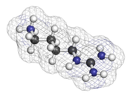 neurotransmitter: Agmatine molecule. 3D rendering. Atoms are represented as spheres with conventional color coding: hydrogen (white), carbon (grey), nitrogen (blue).
