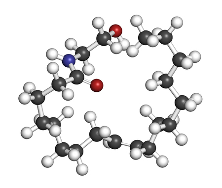 agonist: Oleoylethanolamide (OEA) endogenous peroxisome proliferator-activated receptor alpha (PPAR-?) agonist molecule. 3D rendering. Atoms are represented as spheres with conventional color coding: hydrogen (white), carbon (grey), oxygen (red), nitrogen (blue). Stock Photo