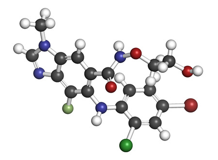 melanoma: Selumetinib cancer drug molecule (MEK1 and MEK2 inhibitor). 3D rendering. Atoms are represented as spheres with conventional color coding: hydrogen (white), carbon (grey), nitrogen (blue), oxygen (red), bromine (brown), chlorine (green), fluorine (light g Stock Photo