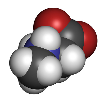 biomarker: Sarcosine (N-methylglycine) molecule. 3D rendering. Atoms are represented as spheres with conventional color coding: hydrogen (white), carbon (grey), oxygen (red), nitrogen (blue).