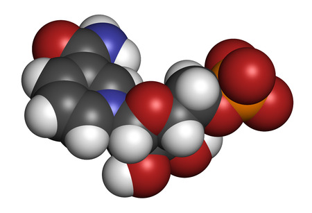 Nicotinamide mononucleotide molecule. Precursor of NAD+. 3D rendering. Atoms are represented as spheres with conventional color coding: hydrogen (white), carbon (grey), oxygen (red), nitrogen (blue), phosphorus (orange).