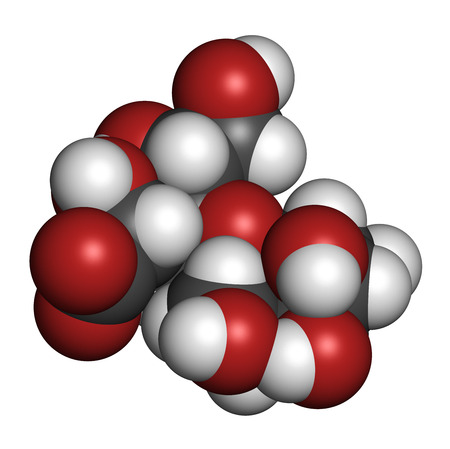 disaccharide: Lactobionic acid (lactobionate) molecule. Commonly used additive in food products, medicinal products and cosmetics. 3D rendering. Atoms are represented as spheres with conventional color coding: hydrogen (white), carbon (grey), oxygen (red).