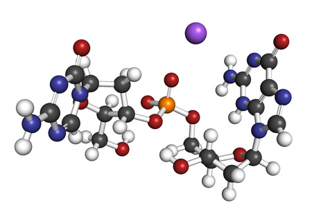 inhibitor: Guadecitabine cancer drug molecule (DNA methyltransferase inhibitor). 3D rendering. Atoms are represented as spheres with conventional color coding: hydrogen (white), carbon (grey), nitrogen (blue), oxygen (red), phosphorus (orange). Stock Photo