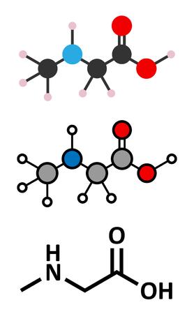 biomarker: Sarcosine (N-methylglycine) molecule. Stylized 2D renderings and conventional skeletal formula. Illustration