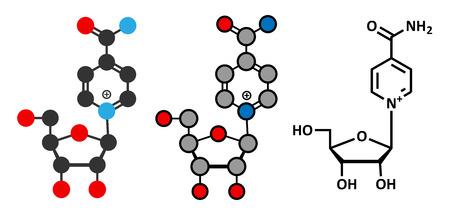 Nicotinamide riboside (NR) molecule. Stylized 2D renderings and conventional skeletal formula. Precursor of nicotinamide adenine dinucleotide (NAD).