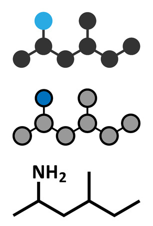 Methylhexanamine (dimethylamylamine, DMAA) stimulant molecule. Stylized 2D renderings and conventional skeletal formula.