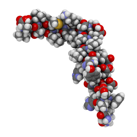 aggregated: Beta-amyloid (Abeta) peptide, 3D rendering. Major component of plaques found in Alzheimers disease. Atoms are represented as spheres with conventional color coding: hydrogen (white), carbon (grey), nitrogen (blue), oxygen (red), sulfur (yellow).