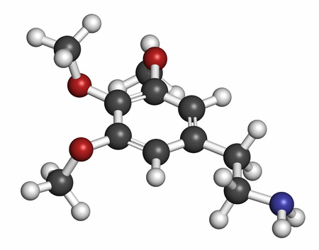 mescaline: Mescaline peyote cactus psychedelic molecule, 3D rendering. Atoms are represented as spheres with conventional color coding: hydrogen (white), carbon (grey), oxygen (red), nitrogen (blue). Stock Photo