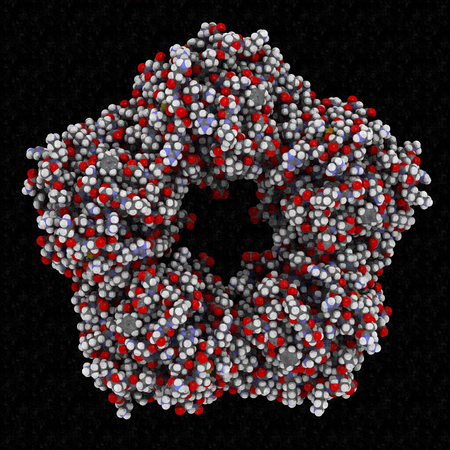 C-reactive protein (CRP, human) inflammation biomarker, chemical structure. 3D rendering. Infections and inflammation cause increased blood levels of this protein. Atoms are represented as spheres with conventional color coding.