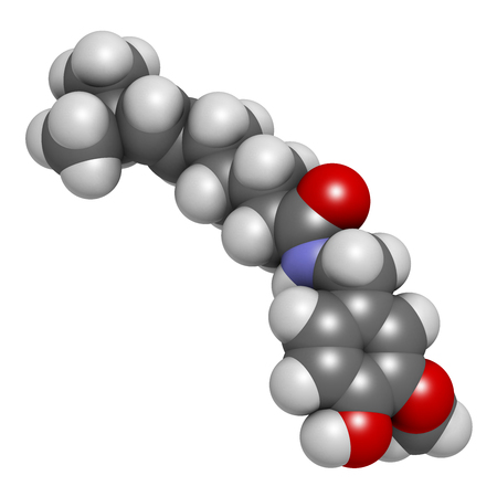 Capsaicin chili pepper molecule, 3D rendering. Used in food, drugs, pepper spray, etc.  Atoms are represented as spheres with conventional color coding: hydrogen (white), carbon (grey), oxygen (red), nitrogen (blue). Stock Photo