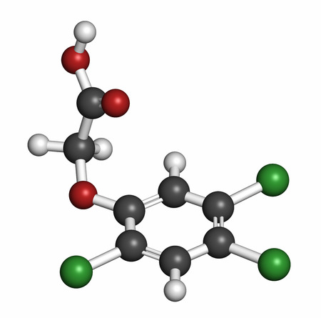 acetic acid: 2,4,5-trichlorophenoxyacetic acid (2,4,5-T) herbicide molecule, 3D rendering. Ingredient of Agent Orange. Atoms are represented as spheres with conventional color coding: hydrogen (white), carbon (grey), oxygen (red), chlorine (green). Stock Photo
