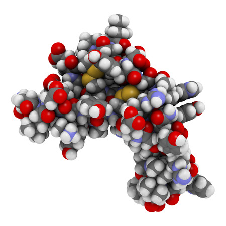 Epidermal growth factor (EGF) signaling protein molecule. 3D rendering. Atoms are represented as spheres with conventional color coding. Standard-Bild