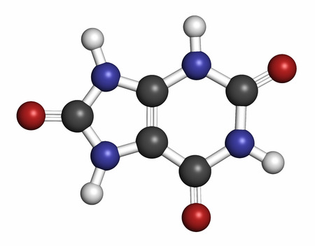 purine: Uric acid molecule, 3D rendering. High blood levels lead to gout disease. Atoms are represented as spheres with conventional color coding: hydrogen (white), carbon (grey), oxygen (red), nitrogen (blue). Stock Photo