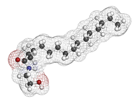 amide: Palmitoylethanolamide (PEA) drug molecule. 3D rendering. Atoms are represented as spheres with conventional color coding: hydrogen (white), carbon (grey), nitrogen (blue), oxygen (red).