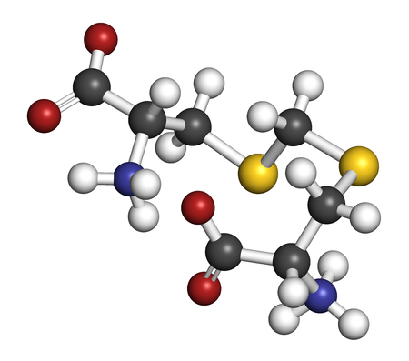 Djenkolic acid molecule. Toxic amino acid found in djenkol beans. 3D rendering. Atoms are represented as spheres with conventional color coding: hydrogen (white), carbon (grey), oxygen (red), nitrogen (blue), sulfur (yellow).