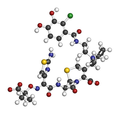 Cefiderocol antibiotic drug molecule (cephalosporin class). 3D rendering. Atoms are represented as spheres with conventional color coding: hydrogen (white), carbon (grey), nitrogen (blue), oxygen (red), sulfur (yellow), chlorine (green).
