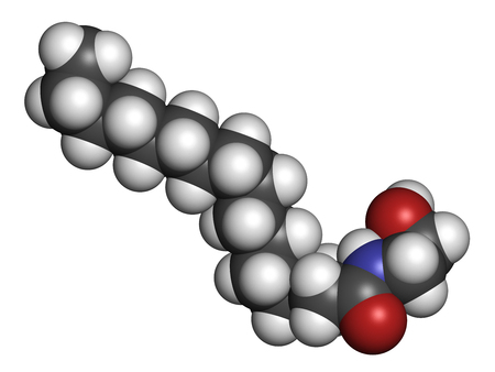 Palmitoylethanolamide (PEA) drug molecule. 3D rendering. Atoms are represented as spheres with conventional color coding: hydrogen (white), carbon (grey), nitrogen (blue), oxygen (red).