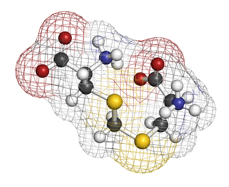 nitrogen: Djenkolic acid molecule. Toxic amino acid found in djenkol beans. 3D rendering. Atoms are represented as spheres with conventional color coding: hydrogen (white), carbon (grey), oxygen (red), nitrogen (blue), sulfur (yellow).