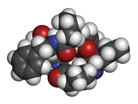 Beta-casomorphin peptide 7 molecule. Breakdown product of casein that may play a role in human diseases. 3D rendering. Atoms are represented as spheres with conventional color coding: hydrogen (white), carbon (grey), oxygen (red), nitrogen (blue).