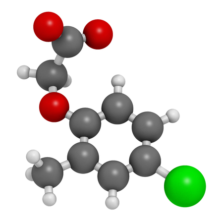 MCPA (2-methyl-4-chlorophenoxyacetic acid) herbicide molecule. 3D rendering. Atoms are represented as spheres with conventional color coding: hydrogen (white), carbon (grey), oxygen (red), chlorine (green).