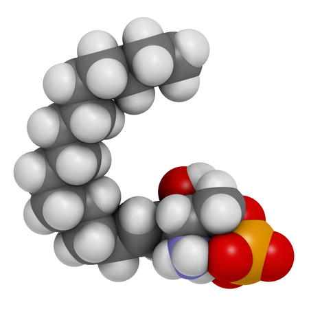 Sphingosine-1-phosphate (S1P) signaling molecule. 3D rendering. Atoms are represented as spheres with conventional color coding: hydrogen (white), carbon (grey), oxygen (red), nitrogen (blue), phosphorus (orange). Stock Photo