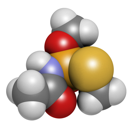 systemic: Acephate insecticide molecule. 3D rendering. Atoms are represented as spheres with conventional color coding: hydrogen (white), carbon (grey), nitrogen (blue), oxygen (red), phosphorus (orange), sulfur (yellow).