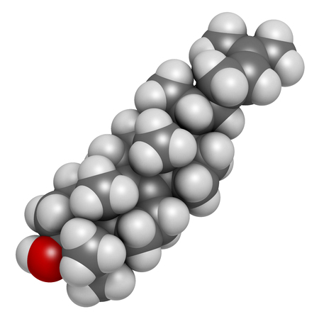 steroid: Lanosterol molecule. Investigated for treatment of cataract. 3D rendering. Atoms are represented as spheres with conventional color coding: hydrogen (white), carbon (grey), oxygen (red).