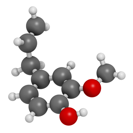 anaesthetic: Eugenol herbal essential oil molecule. Present in cloves, nutmeg, etc. 3D rendering. Atoms are represented as spheres with conventional color coding: hydrogen (white), carbon (grey), oxygen (red).