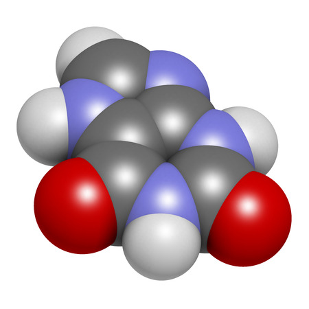 Xanthine purine base molecule. 3D rendering. Atoms are represented as spheres with conventional color coding: hydrogen (white), carbon (grey), nitrogen (blue), oxygen (red). Stock Photo