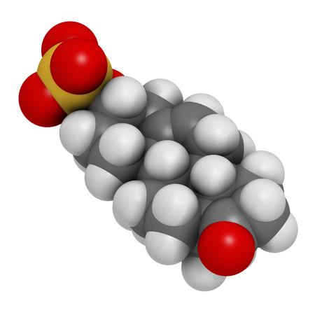 Dehydroepiandrosterone sulfate (DHEA-S) natural hormone molecule. 3D rendering. Atoms are represented as spheres with conventional color coding: hydrogen (white), carbon (grey), oxygen (red), sulfur (yellow).