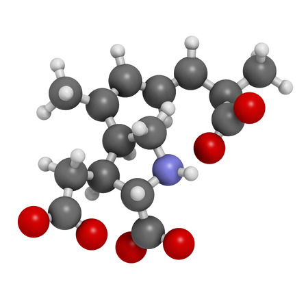 Domoic acid algae poison molecule. Responsible for amnesic shellfish poisoning (ASP). 3D rendering. Atoms are represented as spheres with conventional color coding: hydrogen (white), carbon (grey), nitrogen (blue), oxygen (red).