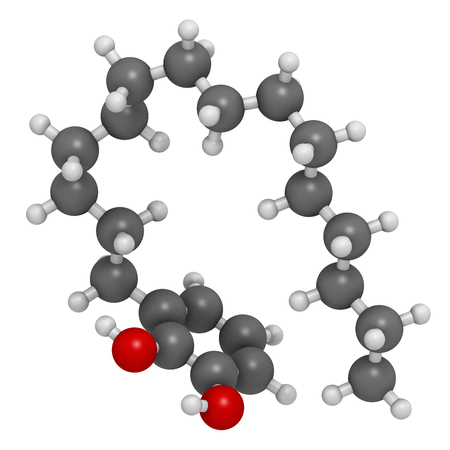 oleoresin: Urushiol poison ivy allergen molecule. Also present in poison oak, lacquer tree and poison sumac. Urushiol is a mixture of closely related components, only one of which is shown. 3D rendering. Atoms are represented as spheres with conventional color codin