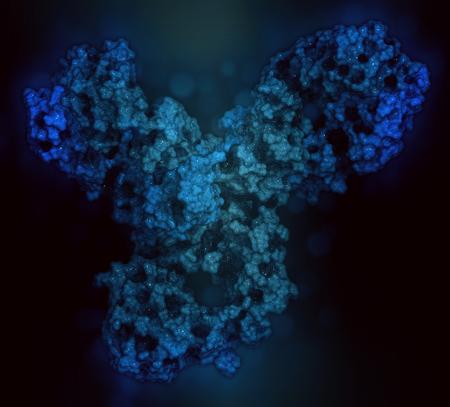 Pembrolizumab monoklonaler Antikörper-Arzneimittel-Protein. Immun-Checkpoint-Inhibitor, der PD-1 zielt, bei der Behandlung einer Anzahl von Krebsarten. 3D-Rendering basierend auf Proteindatenbankeintrag 5dk3. Stabdarstellung kombiniert mit halbtransparenten Flächen. Da Standard-Bild - 78436779