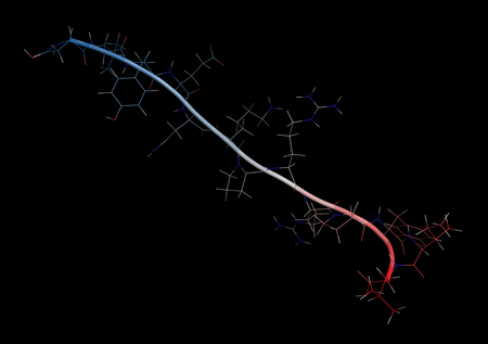 Neurotensin neurotransmitter peptide (Q1E mutated). 3D rendering based on protein data bank entry 2lne. Combined cartoon and stick representation with backbone gradient coloring. Background black.