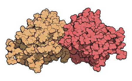polymer: Miraculin (miraculin-like protein from Murraya koenigii or curry tree). Miraculin is a protein with sweetening properties, extracted from the berry of Synsepalum dulcificum or miracle fruit. These proteins are not sweet by themselves but change the percep