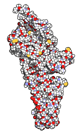 Serotonin receptor 5-HT2B protein. Shown in complex with an LSD molecule. Involved in drug-induced valvular heart disease. 3D rendering based on protein data bank entry 5tvn. Atoms are represented as spheres with conventional color coding. Stock Photo