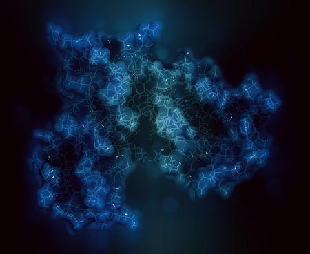 Interleukine-2-receptor-alfaketen (CD25, extracellulair domein). CD25 is het doelwit van het geneesmiddel daclizumab, het monoklonale antilichaam, dat wordt gebruikt bij de behandeling van multiple sclerose. 3D-weergave op basis van invoer van eiwitgegevensbank 1z92. Stickweergave gecombineerd