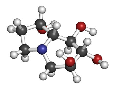 Castanospermine alkaloid molecule. Isolated from Castanospermum australe. 3D rendering. Atoms are represented as spheres with conventional color coding: hydrogen (white), carbon (grey), oxygen (red), nitrogen (blue).