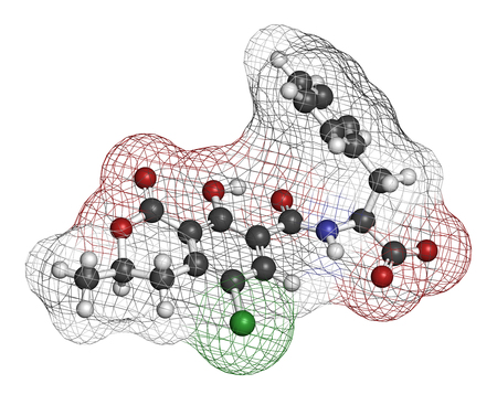 nephropathy: Ochratoxin A mycotoxin molecule. 3D rendering. Atoms are represented as spheres with conventional color coding: hydrogen (white), carbon (grey), oxygen (red), nitrogen (blue), chlorine (green).