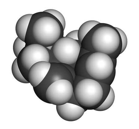 Caryophyllene molecule. Constituent of multiple herbal essential oils, including clove oil. 3D rendering. Atoms are represented as spheres with conventional color coding: hydrogen (white), carbon (grey).