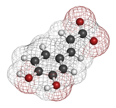 Caffeic acid molecule. Intermediate in the biosynthesis of lignin. 3D rendering. Atoms are represented as spheres with conventional color coding: hydrogen (white), carbon (grey), oxygen (red).