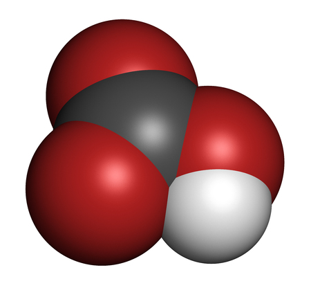 sodium hydrogen carbonate: Bicarbonate anion, chemical structure. Common salts include sodium bicarbonate (baking soda) and ammonium bicarbonate. 3D rendering. Atoms are represented as spheres with conventional color coding: hydrogen (white), carbon (grey), oxygen (red). Stock Photo