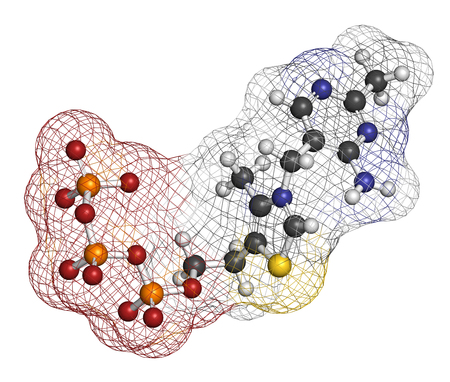 Thiamine triphosphate molecule. 3D rendering. Atoms are represented as spheres with conventional color coding: hydrogen (white), carbon (grey), oxygen (red), nitrogen (blue), sulfur (yellow), phosphorus (orange).