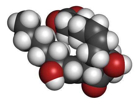 Prostaglandin D2 (PGD2) molecule. 3D rendering. Atoms are represented as spheres with conventional color coding: hydrogen (white), carbon (grey), oxygen (red). Stock Photo