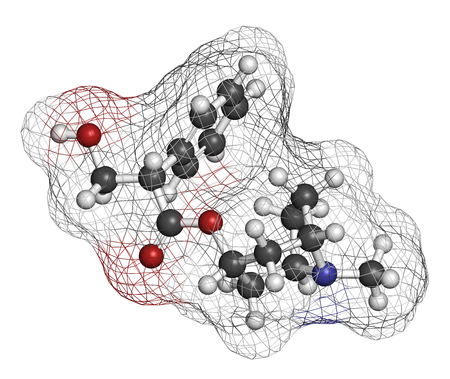 belladonna: Hyoscyamine alkaloid molecule. Herbal sources include henbane, mandrake, jimsonweed, deadly nightshade and tomato. 3D rendering. Atoms are represented as spheres with conventional color coding: hydrogen (white), carbon (grey), oxygen (red), nitrogen (blue