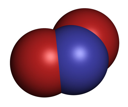 nitrogen: Nitrite anion, chemical structure. Nitrite salts are used in the curing of meat. 3D rendering. Atoms are represented as spheres with conventional color coding: nitrogen (blue), oxygen (red).