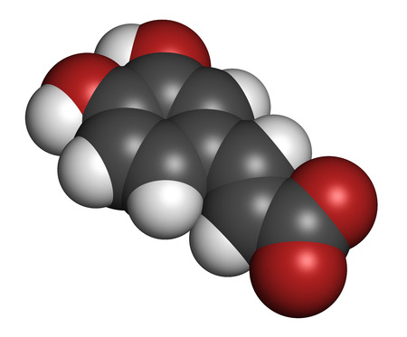 biosynthesis: Caffeic acid molecule. Intermediate in the biosynthesis of lignin. 3D rendering. Atoms are represented as spheres with conventional color coding: hydrogen (white), carbon (grey), oxygen (red).