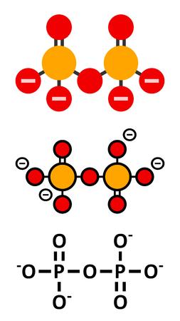 Pyrophosphate (PPi) anion. Important en biochimie, utilisé comme additif alimentaire (E450). Formule squelettique conventionnelle et représentations stylisées. Vecteurs