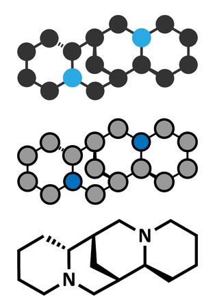 Sparteine scotch broom alkaloid molecule. Conventional skeletal formula and stylized representations. Illustration